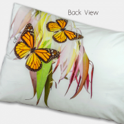 Monach-Butterfly-Back