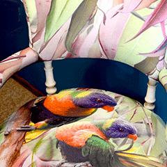 Lorikeet Tub Chair